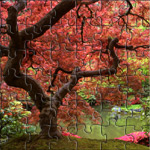 A picture of a beautiful japanese garden.